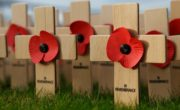 wooden crosses with poppies