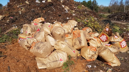 leaves in paper bags ready to be composted