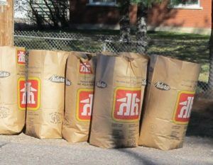 paper leaf and yard waste bags filled and placed at curbside for collection